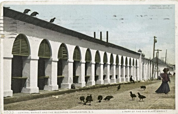 Charleston Eagles, Charleston Markets, Charleston 1910, Buzzards