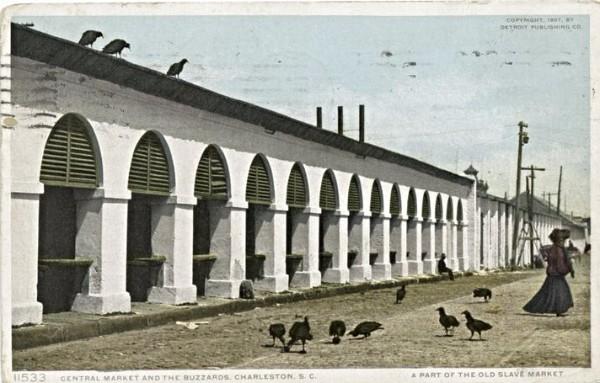 Charleston Eagles, Charleston Markets, Charleston 1910, Buzzards