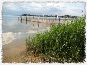 Real Estate on On Lbi And The Lbi Real Estate Market Long Beach Island Nj Real Estate