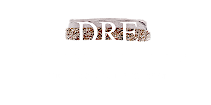 DeVries Real Estate  Logo